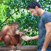 Experience Breakfast with Orangutan